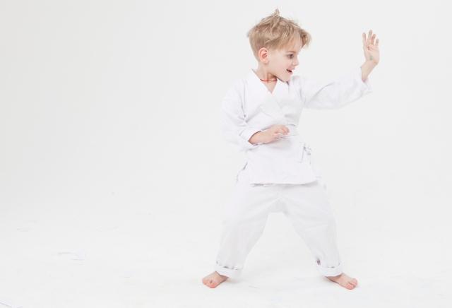 f:id:karate-kids:20181122142518j:plain