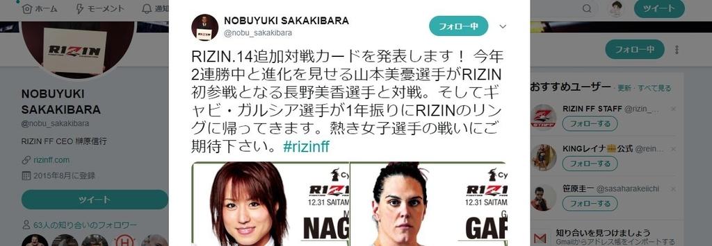 f:id:karate-kids:20181213121830j:plain