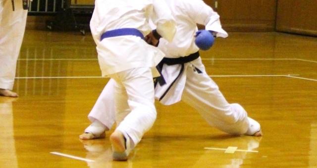 f:id:karate-kids:20190301142339j:plain