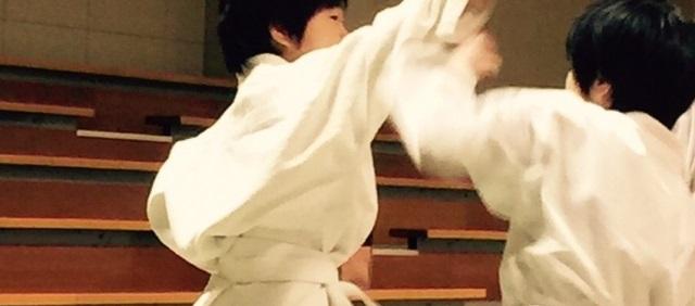 f:id:karate-kids:20190306225342j:plain