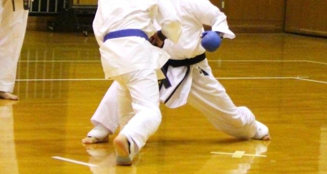 f:id:karate-kids:20190313222725j:plain
