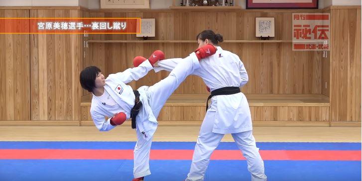 f:id:karate-kids:20190403140107j:plain