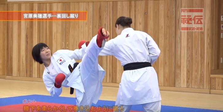 f:id:karate-kids:20190403141640j:plain