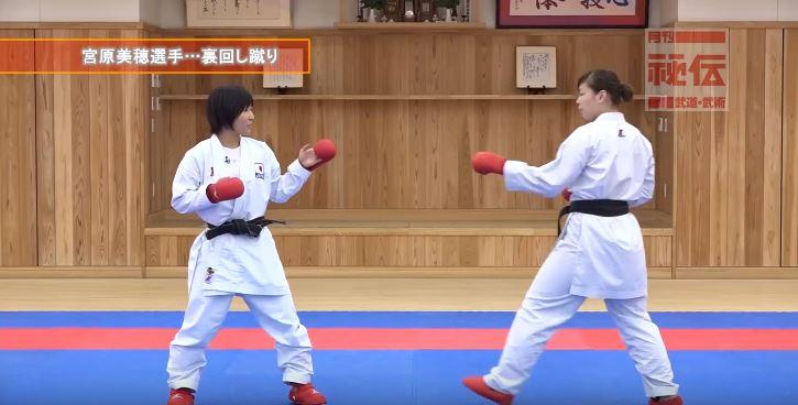 f:id:karate-kids:20190403142354j:plain
