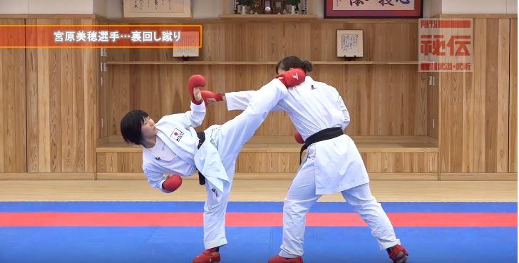 f:id:karate-kids:20190403142457j:plain