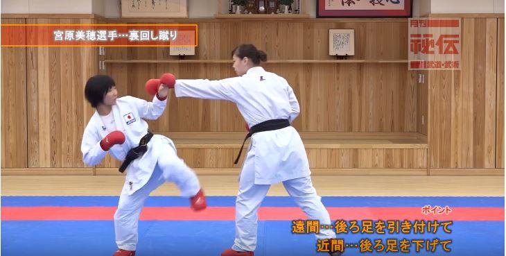 f:id:karate-kids:20190403142957j:plain