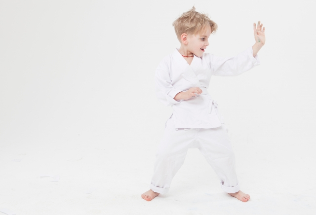 f:id:karate-kids:20190522075054j:plain