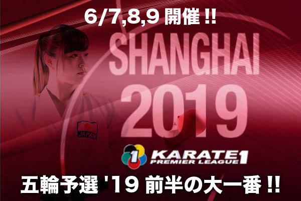 f:id:karate-kids:20190530103403j:plain
