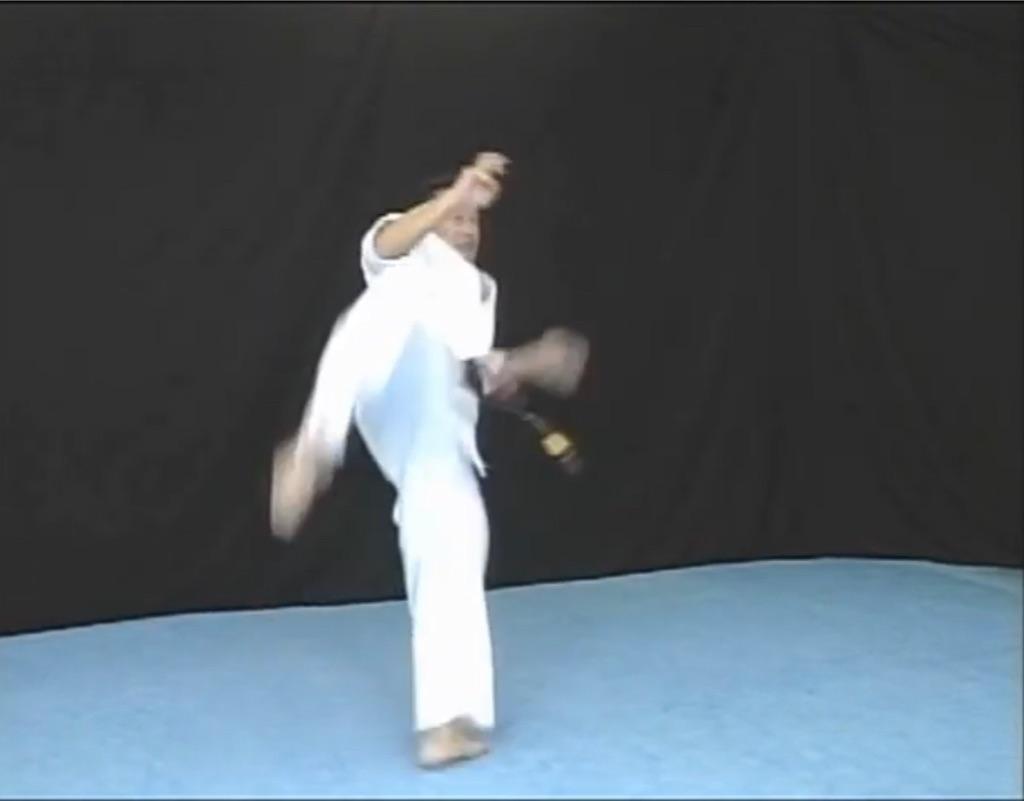 f:id:karate-kids:20190919184108j:image