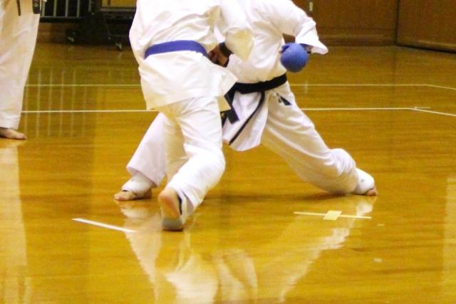 f:id:karate-kids:20191204124210j:plain