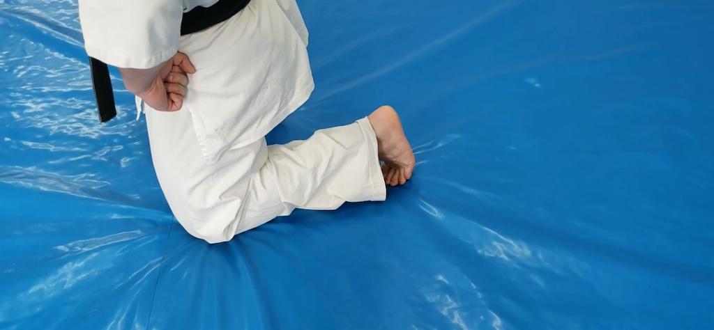 f:id:karate-kids:20200402183234p:image