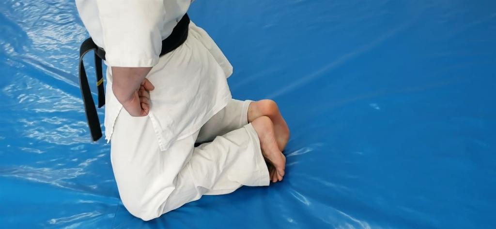 f:id:karate-kids:20200402183302p:image