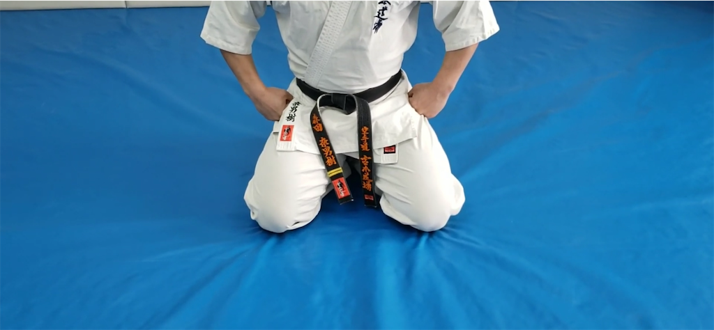 f:id:karate-kids:20200402183321p:image