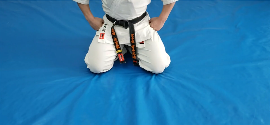 f:id:karate-kids:20200402183326p:image