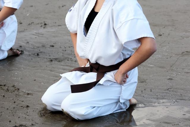 f:id:karate-kids:20200402183526j:plain