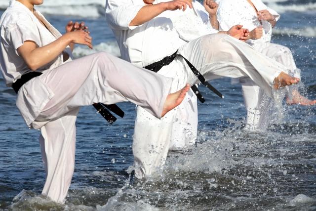 f:id:karate-kids:20210325114146j:plain