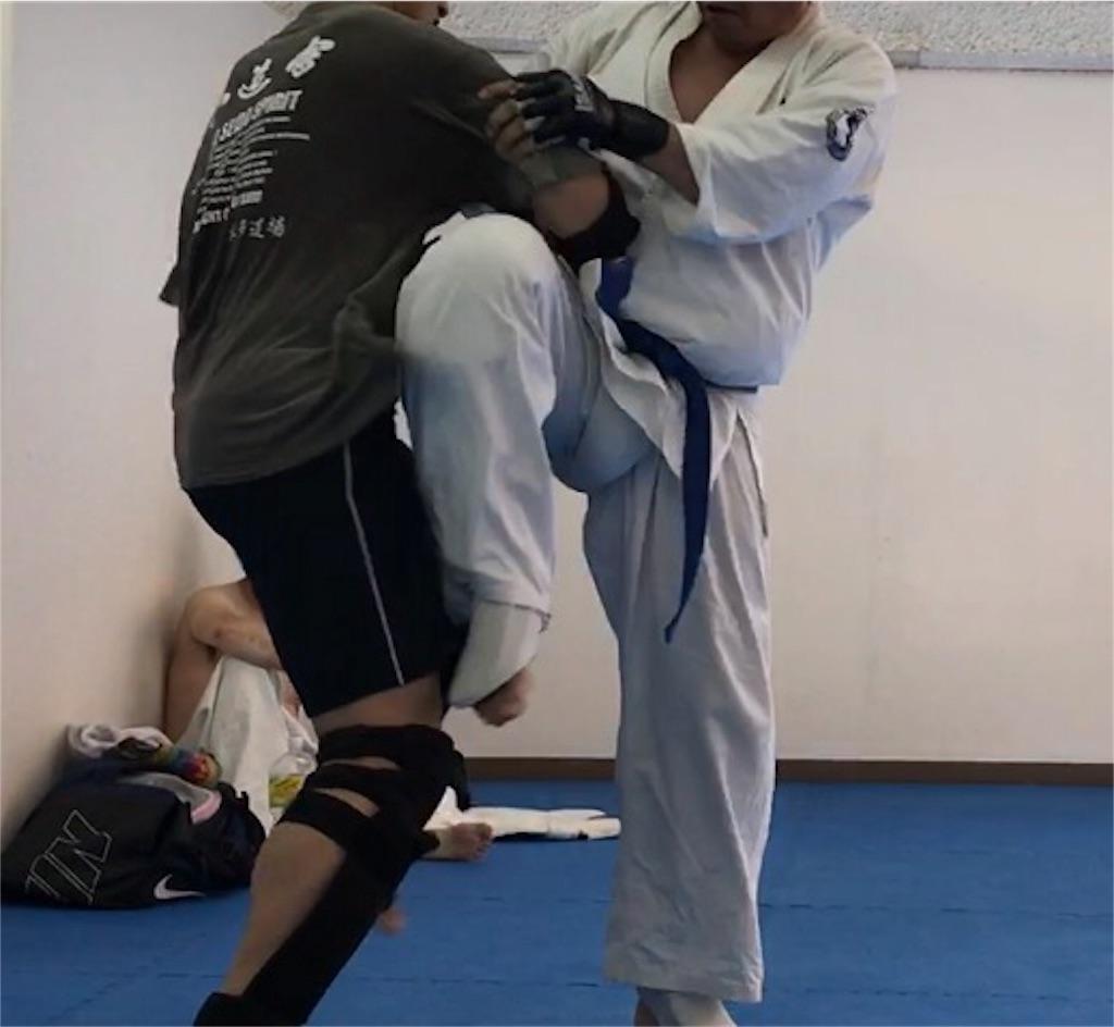 f:id:karate1030:20170528101215j:image
