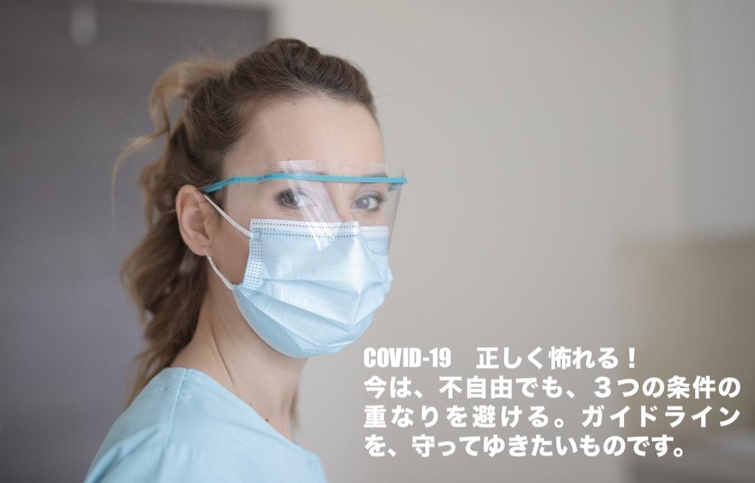 f:id:karei2karei:20200327211319j:plain