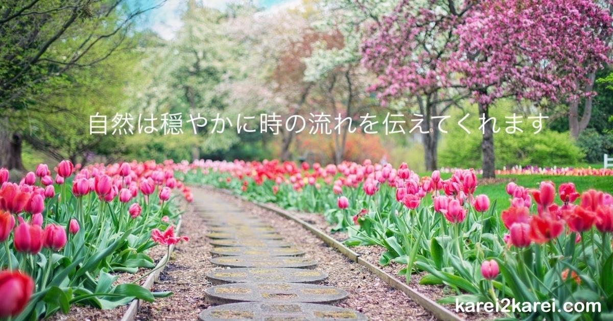 f:id:karei2karei:20200401172851j:plain