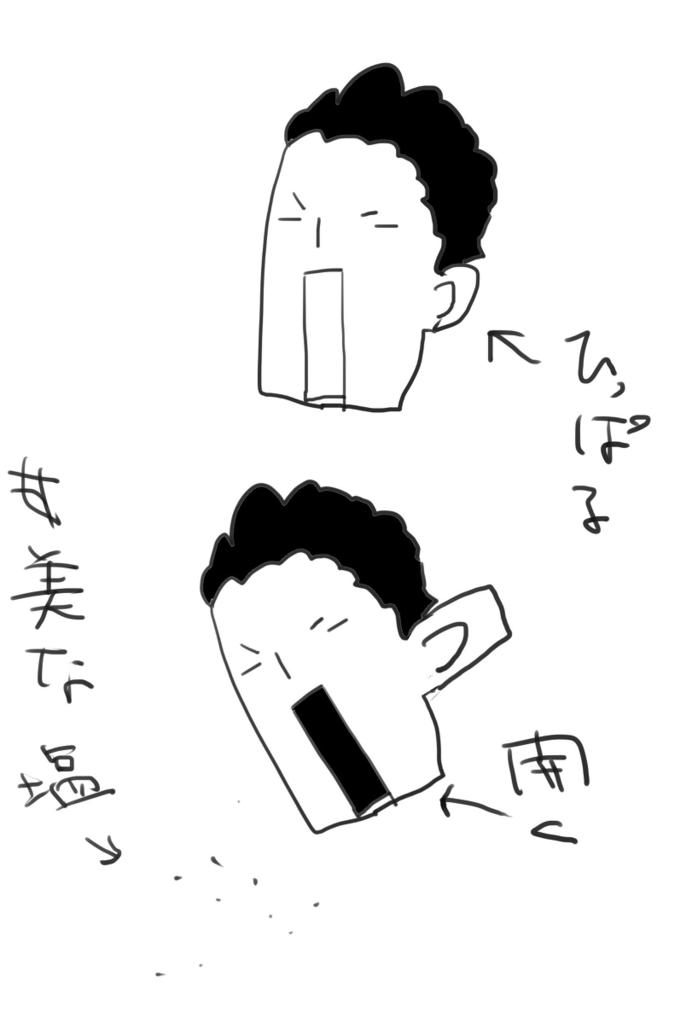 f:id:kareidosuko-pu:20181129205952p:plain
