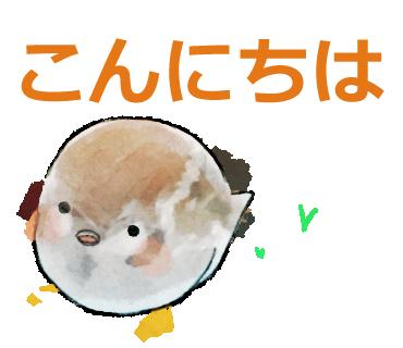 f:id:kareidosuko-pu:20190314215303p:plain