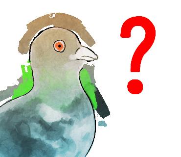 f:id:kareidosuko-pu:20190314215441p:plain