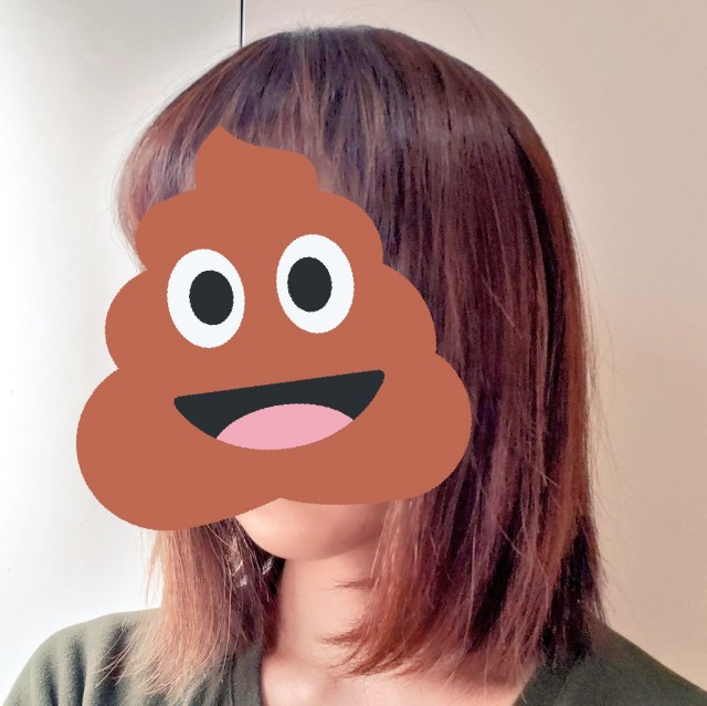 f:id:kareidosuko-pu:20190318161838j:image