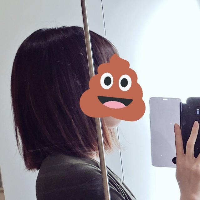 f:id:kareidosuko-pu:20190318162221j:image