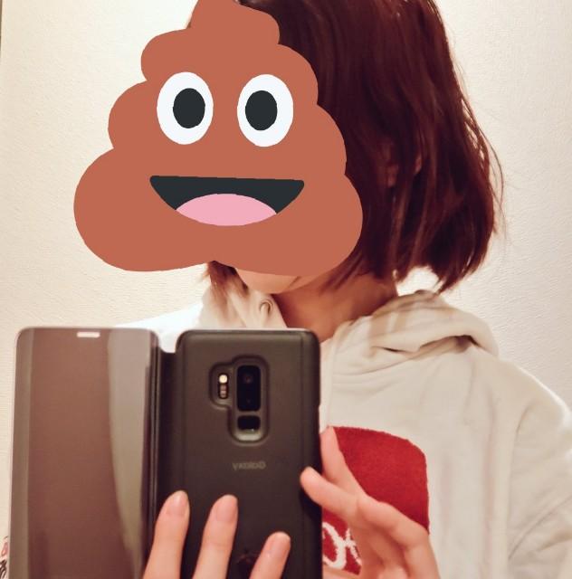 f:id:kareidosuko-pu:20190503235311j:image
