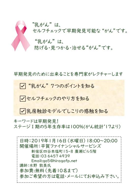 f:id:karenaisaifu:20190107101812j:plain