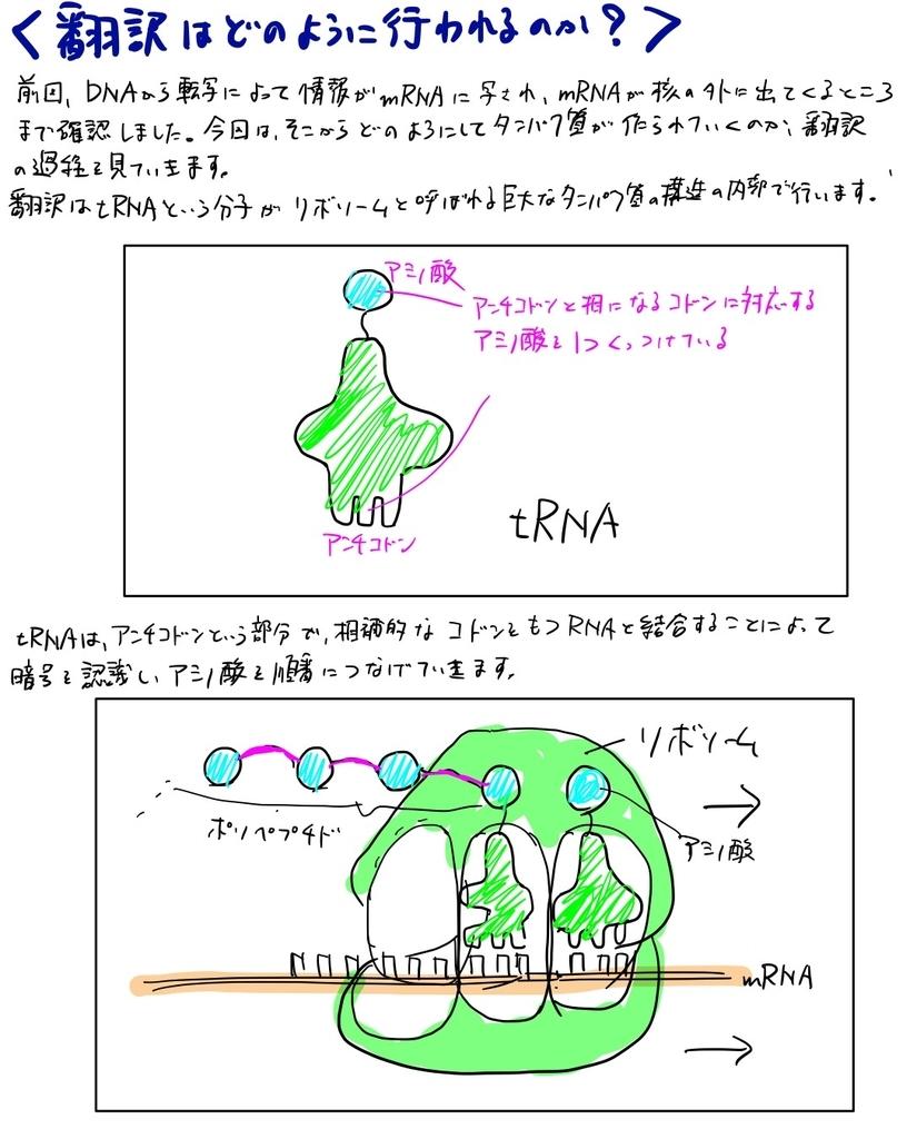 f:id:karia68:20181112223400j:plain