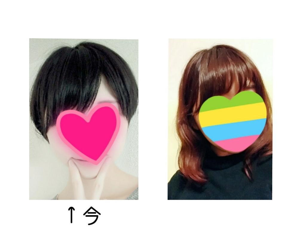 f:id:kariari:20170611130504j:plain