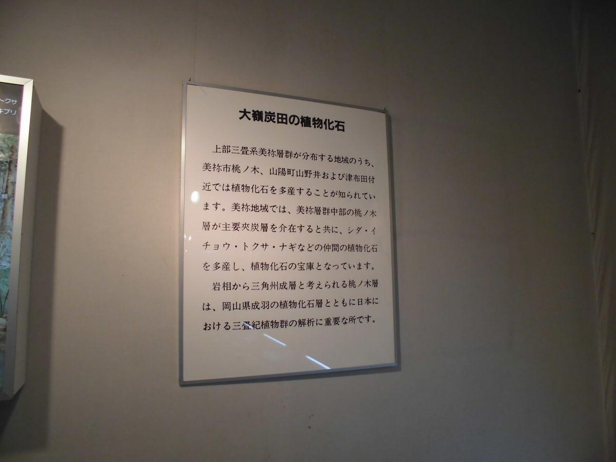 f:id:karibatakurou:20190428121634j:plain