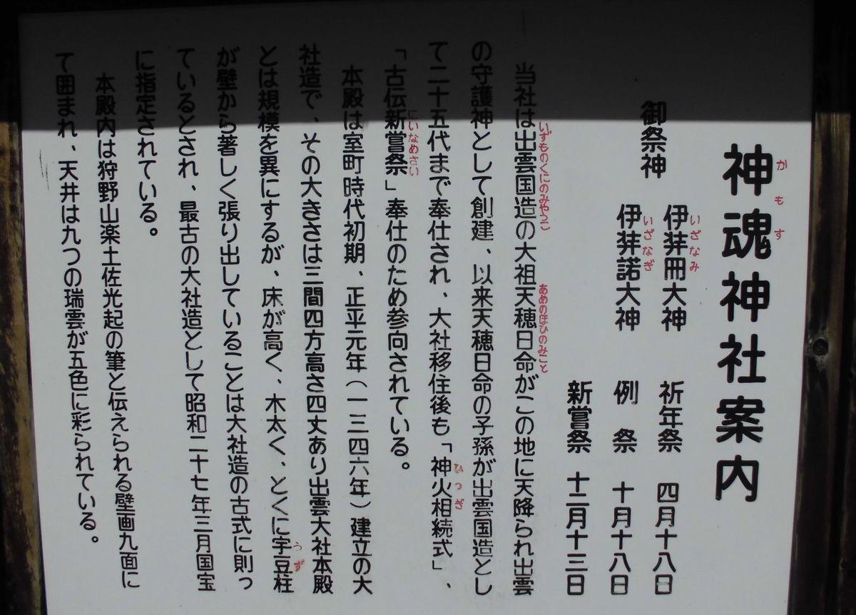 f:id:karibatakurou:20200507053733j:plain