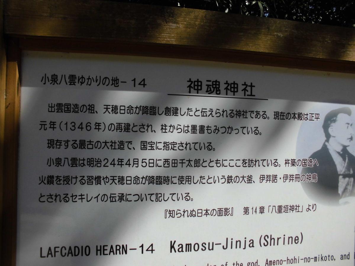 f:id:karibatakurou:20200507053844j:plain