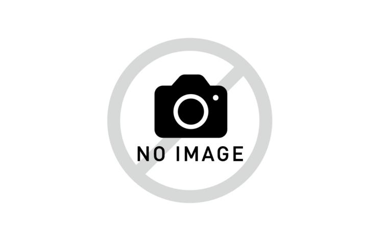 f:id:karibatakurou:20200916035618p:plain