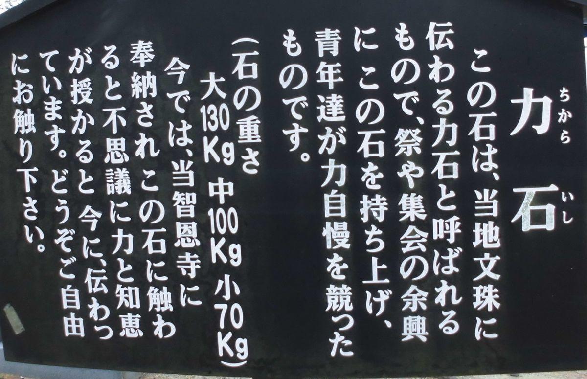f:id:karibatakurou:20210208115146j:plain