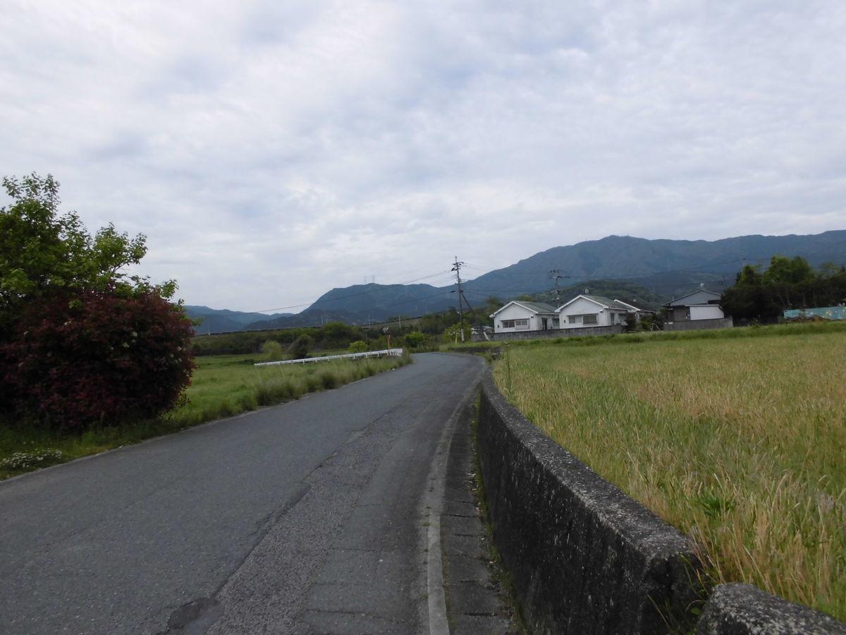 f:id:karibatakurou:20210430081847j:plain