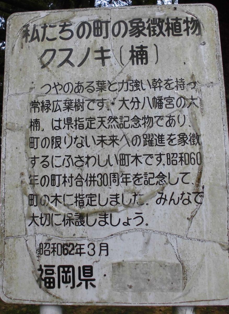 f:id:karibatakurou:20210505071720j:plain