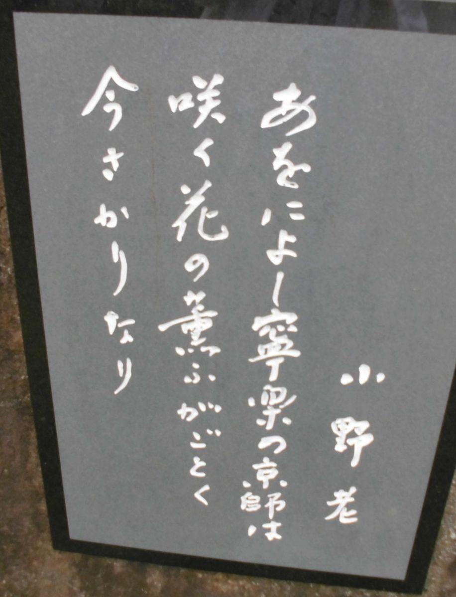 f:id:karibatakurou:20210527071412j:plain
