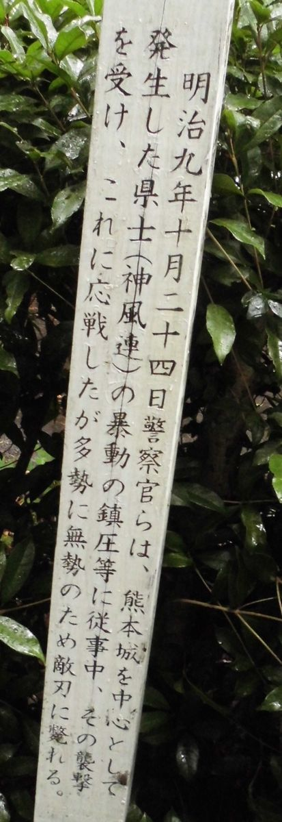 f:id:karibatakurou:20210720085532j:plain