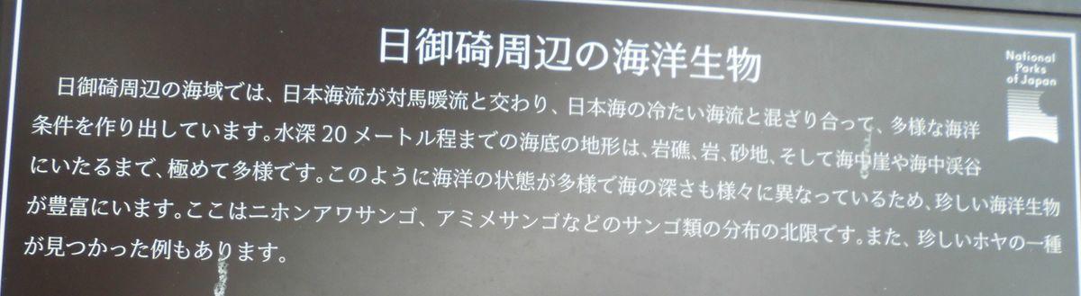 f:id:karibatakurou:20210902100214j:plain