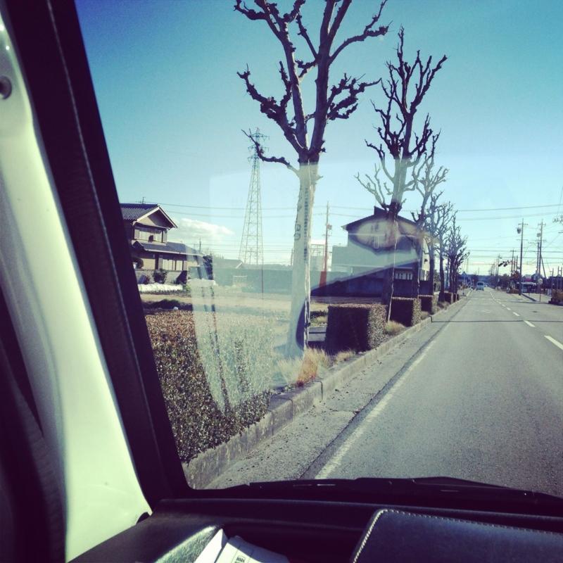 f:id:karika2012:20140207014730j:image
