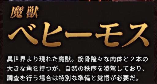 f:id:karikariDQ10:20180731082017j:image