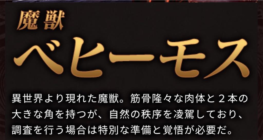 f:id:karikariDQ10:20190529082812j:image