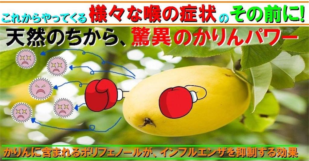 f:id:karin-matsugishi:20170208165837j:image