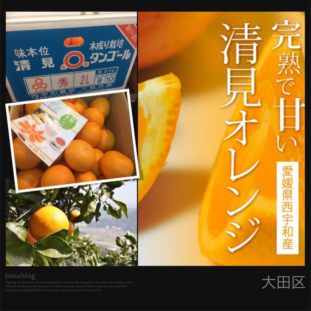 f:id:karin-matsugishi:20170302091207j:image