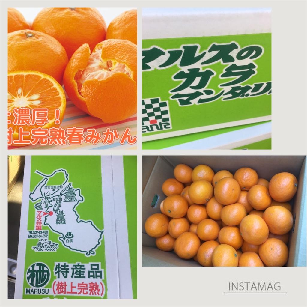 f:id:karin-matsugishi:20170403090603j:image