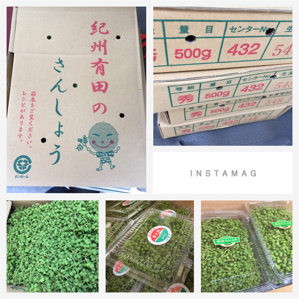 f:id:karin-matsugishi:20170522090957j:image