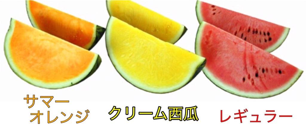 f:id:karin-matsugishi:20170609092559j:image